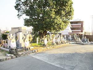 兵庫県宝塚市にある川面霊園