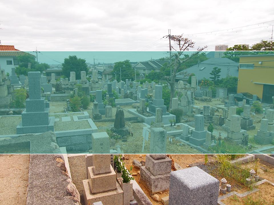米谷墓地の墓地風景