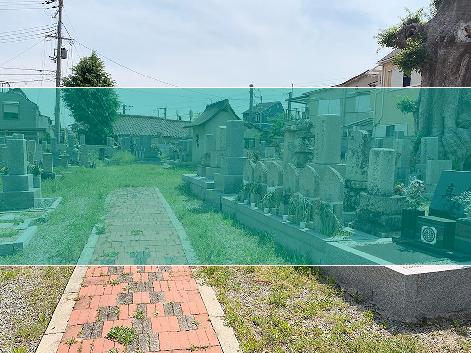 小花霊園の墓地風景