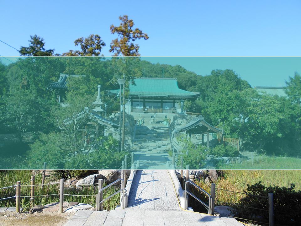 多聞寺墓地の墓地風景